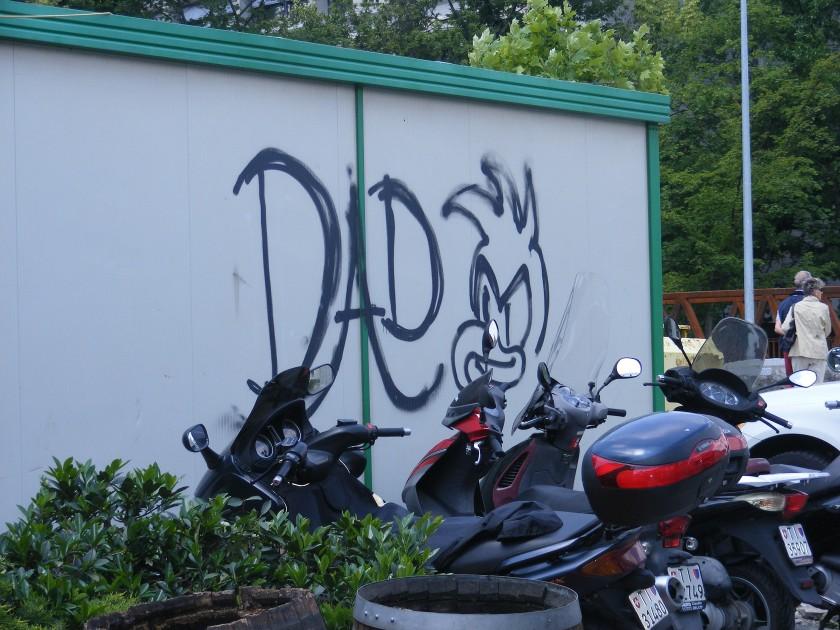 DSCF3924